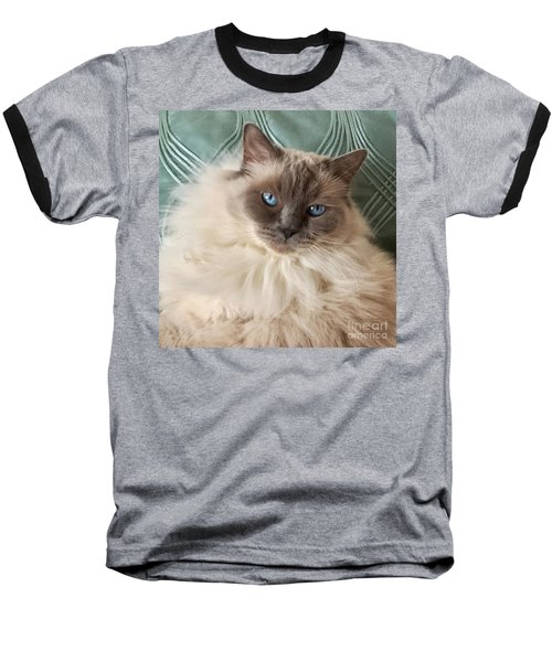 Sugar My Ragdoll Cat Baseball T-Shirt