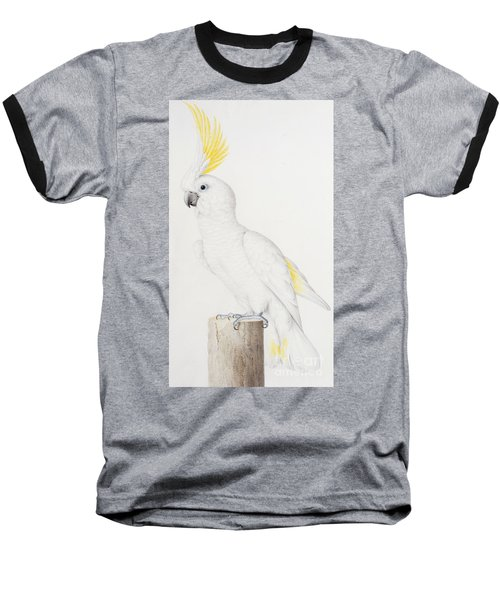 Sulphur Crested Cockatoo Baseball T-Shirt by Nicolas Robert