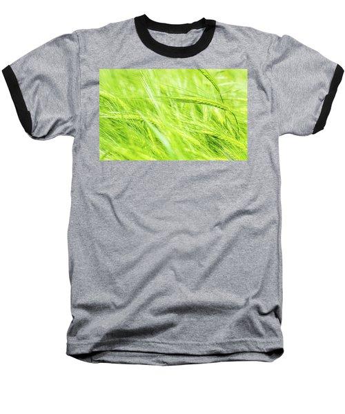 Summer Barley. Baseball T-Shirt