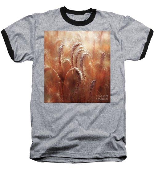Summer Corn Baseball T-Shirt by Agnieszka Mlicka