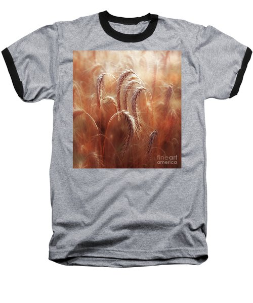 Summer Corn Baseball T-Shirt