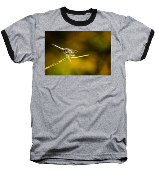 Summer Days Baseball T-Shirt by Craig Szymanski