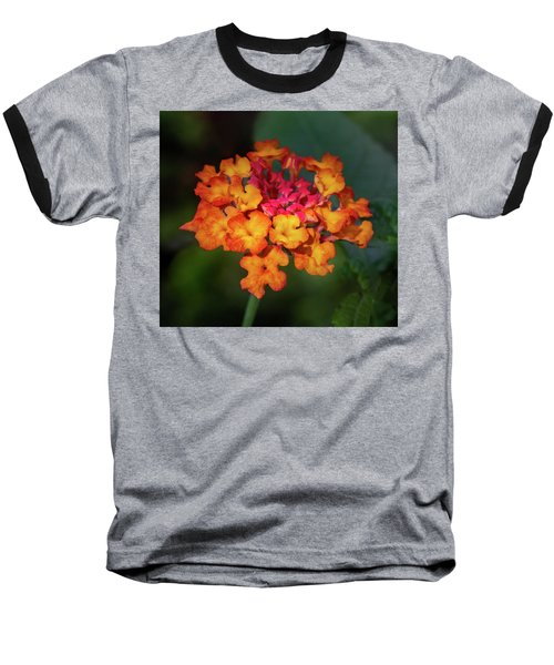 Summer Floral Colors Baseball T-Shirt