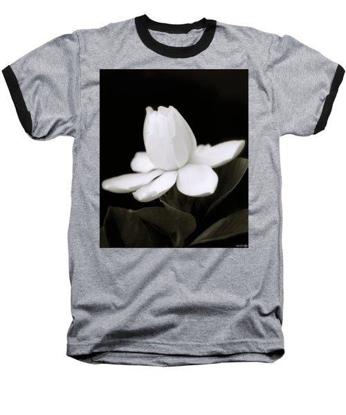 Summer Fragrance Baseball T-Shirt by Holly Kempe
