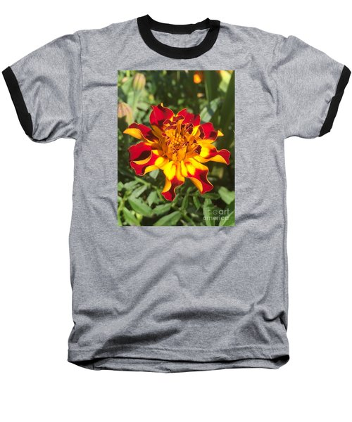 Summer Marigold Baseball T-Shirt