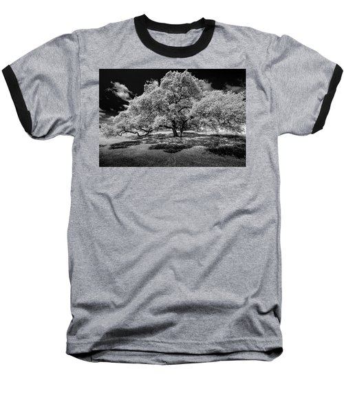 A Summer's Night Baseball T-Shirt by Darryl Dalton