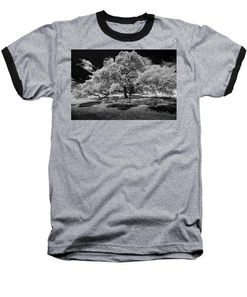 A Summer's Night Baseball T-Shirt