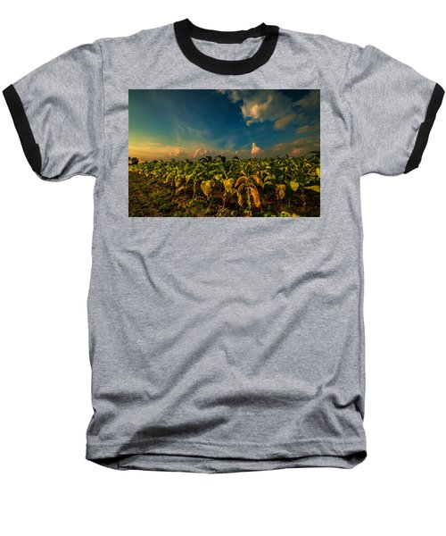 Summer Tobacco  Baseball T-Shirt by John Harding