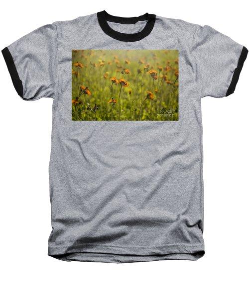 Summer Wildflowers Baseball T-Shirt by Diane Diederich