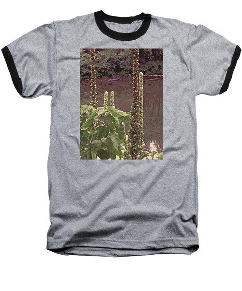 Summer's Last Stand Baseball T-Shirt