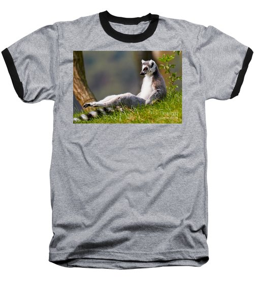 Sun Bathing Ring-tailed Lemur  Baseball T-Shirt