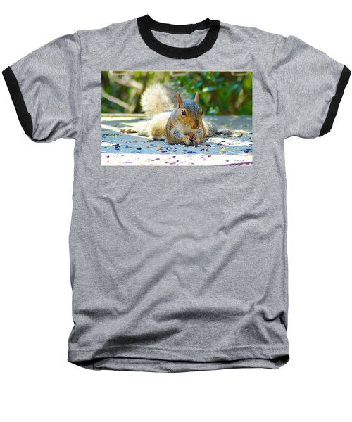 Sun Bathing Squirrel Baseball T-Shirt by Kathy Kelly