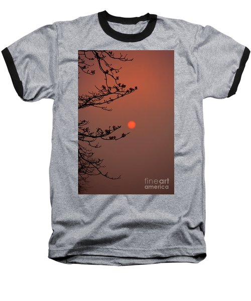 Sun Blossoms Nature Asia  Baseball T-Shirt