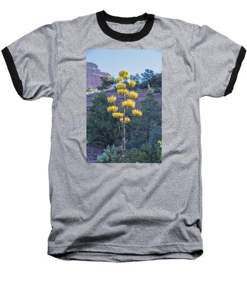 Sun Brightened Century Plant Baseball T-Shirt by Laura Pratt