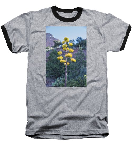 Sun Brightened Century Plant Baseball T-Shirt