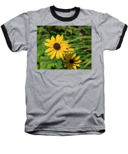 Sun Drenched Daisy Baseball T-Shirt