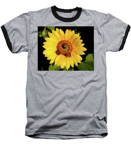 Sunflower And Bees Baseball T-Shirt by Nancy Landry