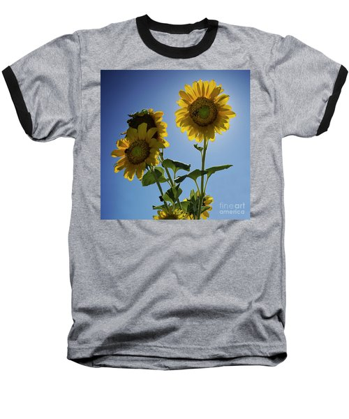 Sun Flowers Baseball T-Shirt
