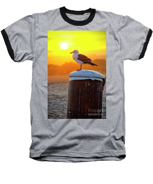 Sun Gull Baseball T-Shirt