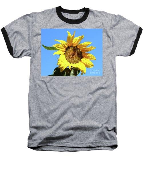 Sun In The Sky Baseball T-Shirt