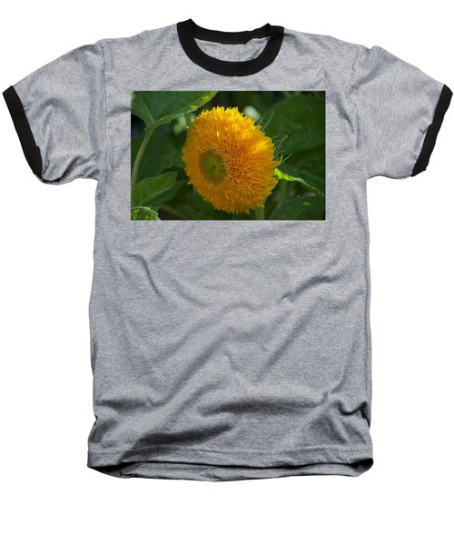 Sun Baseball T-Shirt by Joseph Yarbrough
