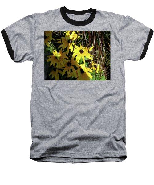 Sun Lit Diasies Baseball T-Shirt by Michele Wilson