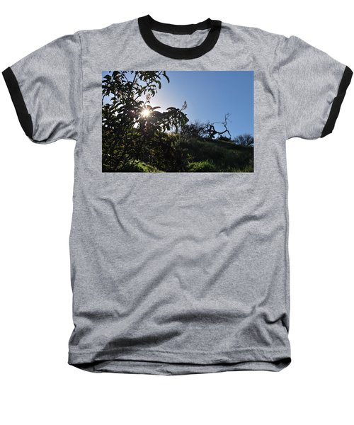Baseball T-Shirt featuring the photograph Sun Shines Through The Greenery by Matt Harang