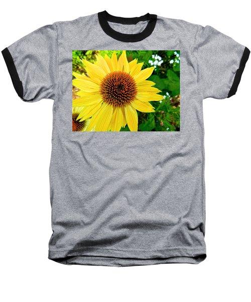 Sun Soaked Echinacea Baseball T-Shirt