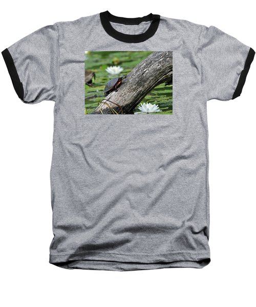 Baseball T-Shirt featuring the photograph Turtle Sunbathing by Glenn Gordon