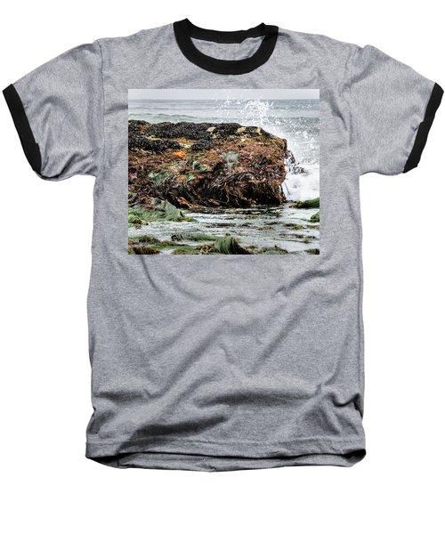 Sunbathing Starfish Baseball T-Shirt