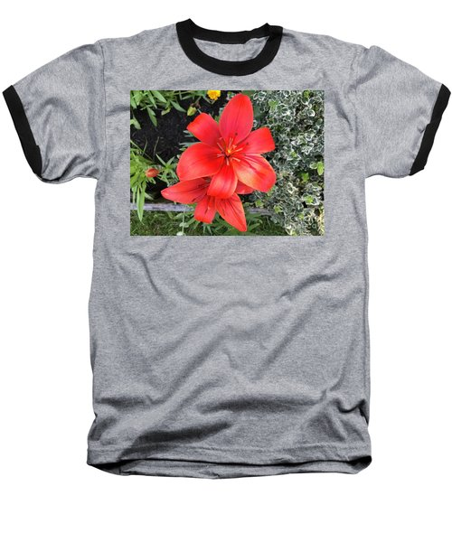 Sunbeam On Red Day Lily Baseball T-Shirt