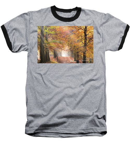 Sunbeams In A Forest In Autumn Baseball T-Shirt