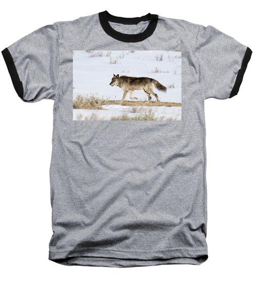 Sunday Stroll Baseball T-Shirt