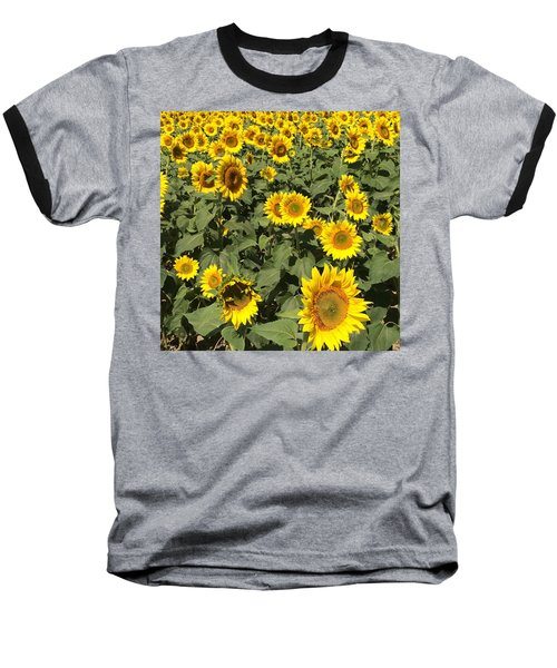 Baseball T-Shirt featuring the photograph Sunflower 2016 by Caroline Stella