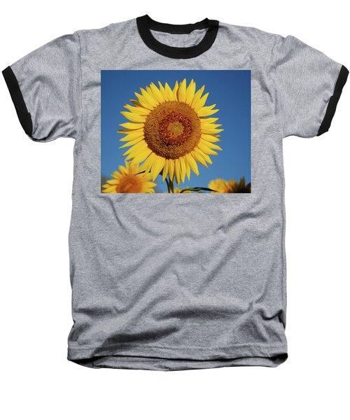 Sunflower And Blue Sky Baseball T-Shirt by Nancy Landry