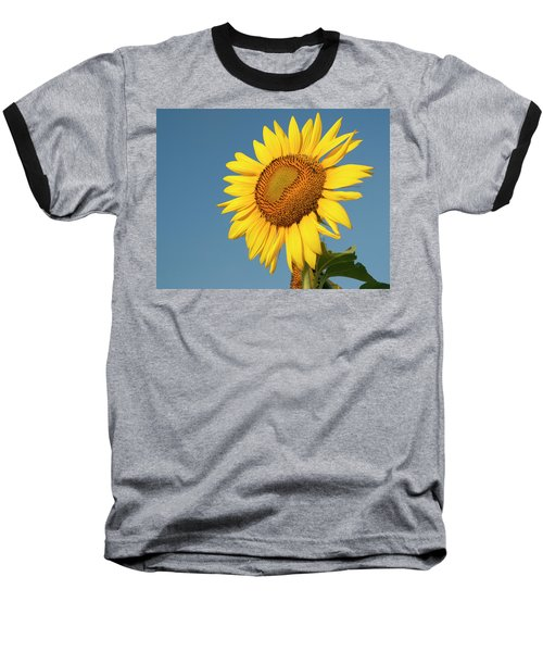 Sunflower And Blue Sky Baseball T-Shirt by Phyllis Peterson