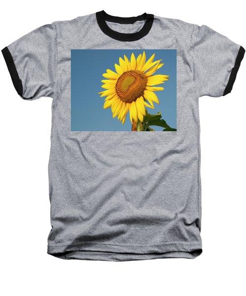 Sunflower And Blue Sky Baseball T-Shirt
