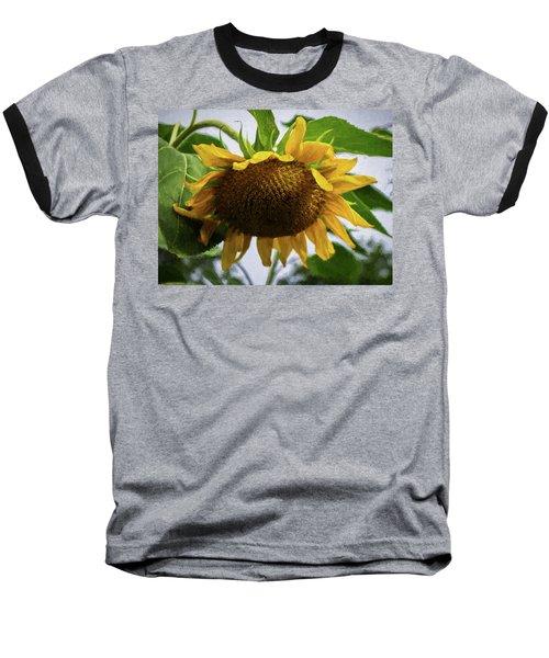 Sunflower Art II Baseball T-Shirt