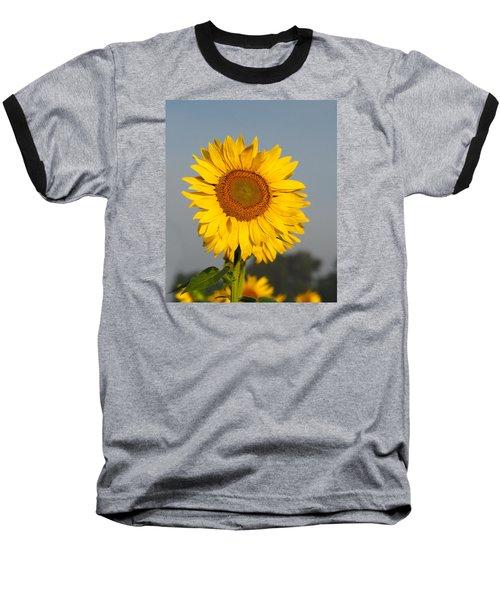 Sunflower At Attention Baseball T-Shirt