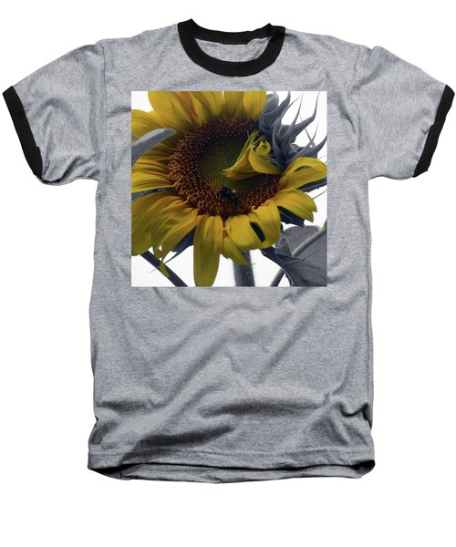 Sunflower Bee Baseball T-Shirt