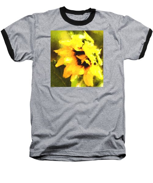 Sunflower Baseball T-Shirt by Cathy Donohoue