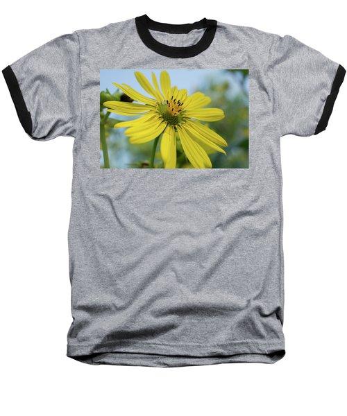 Sunflower Close-up Baseball T-Shirt
