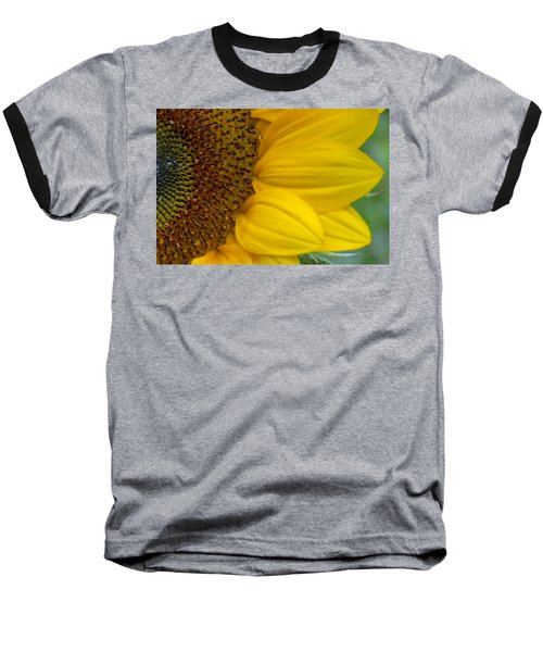 Sunflower Closeup Baseball T-Shirt