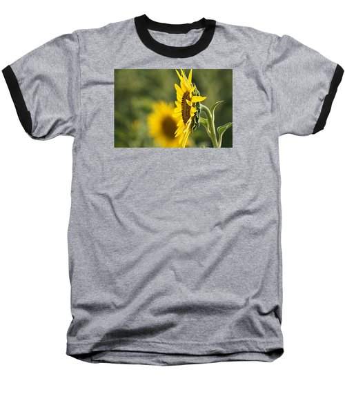 Baseball T-Shirt featuring the photograph Sunflower Delight by Kathy Churchman