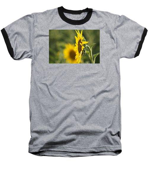 Sunflower Delight Baseball T-Shirt