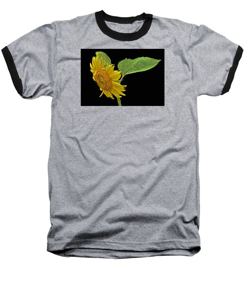 Sunflower Baseball T-Shirt by Don Durfee