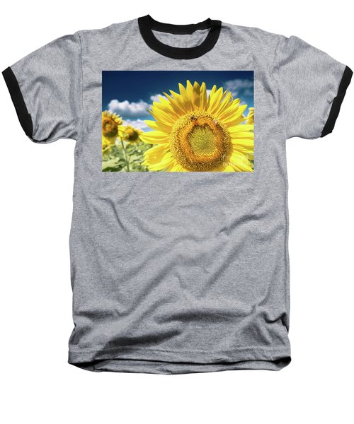 Sunflower Dreams Baseball T-Shirt
