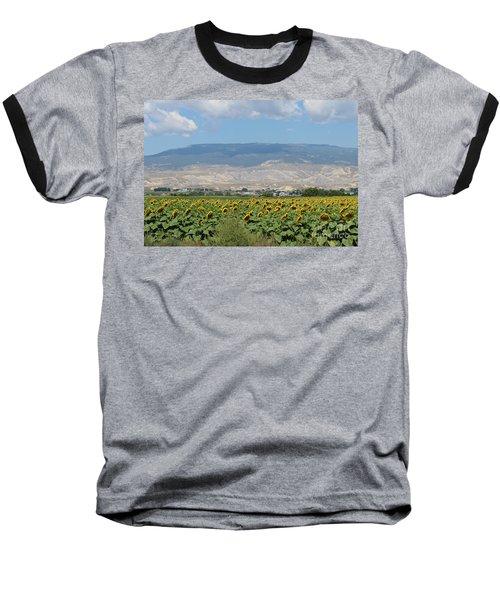 Sunflower Farming Splendor In Delta Co Baseball T-Shirt