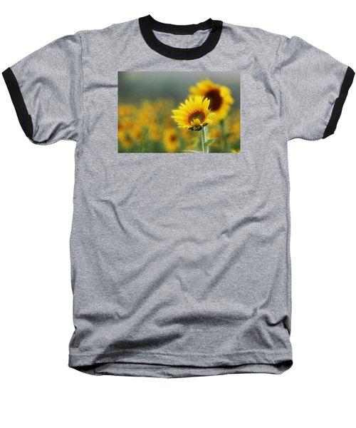 Sunflower Field Baseball T-Shirt by Karen McKenzie McAdoo
