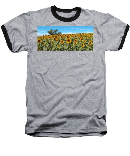 Sunflower Field One Baseball T-Shirt